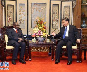 习近平会见津巴布韦总统穆加贝