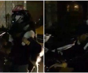 狗狗戴头盔与主人共骑摩托车 开心兴奋