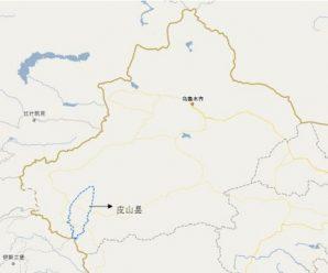 新疆3名在逃暴恐团伙人员暴力拒捕 被警方当场击毙