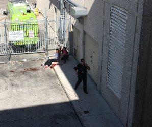 美国佛罗里达机场枪击案致5死8伤 枪手系退伍军人
