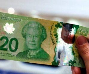 全球30多个国家地区发行塑料钞票 中国暂无时间表