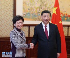 习近平会见林郑月娥:符合中央标准当选实至名归