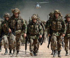俄防长:俄西部地区30多个战术单位处于战备状态