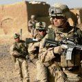 卡尔扎伊:美国要努力推动和平,而不是越反越恐