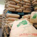 欧盟拟取消福岛大米进口限制 或有助日本食品出口