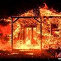 美国加州森林大火已造成21人死亡 死亡人数或继续上升