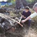 男子发现明代金丝楠阴沉木:价值2千万 愿捐给故宫