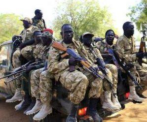 南苏丹部族内部发生冲突 已致172人死亡213人受伤