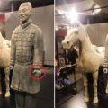 秦兵马俑博物馆前馆长:兵马俑被损盗多日才发现 不可原谅