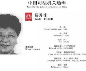 百名红通头号嫌犯杨秀珠首次接受电视采访:海外逃亡太苦了