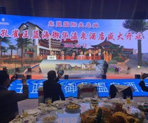 东盟国际生态城蓝海御华酒店举行开业仪式