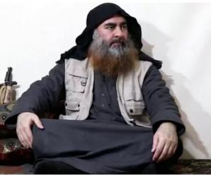 """俄国防部""""泼冷水"""":没有可靠证据证明巴格达迪已死"""