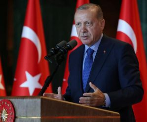 埃尔多安:土耳其在叙北部的军事行动不会停止