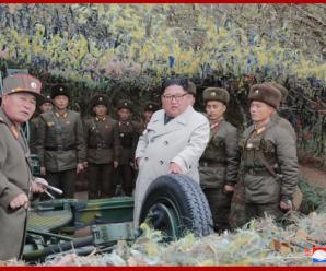金正恩视察西部前线部队 现场下达海岸炮射击指示