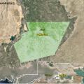 从太空看蝗虫:巴基斯坦蝗灾影响有多大?
