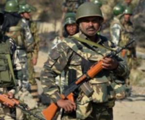 国防部:中印边境冲突责任完全在印方