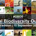 联合国发布第五版《全球生物多样性展望》