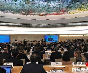 中国社会组织在联合国人权理事会就多项议题有力发声